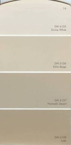 SW accessable beige color palette